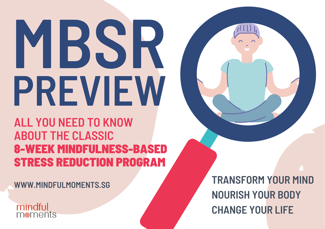 MBSR Preview Mindful Moments