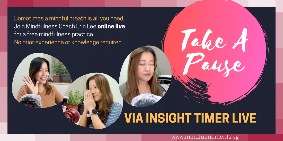 Mindfulness Coaching with Erin Lee for Individuals, Small Groups and Teams